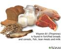 Vitamin B1 source